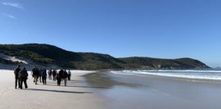 delegates_take_a_walk_along_the_pristine_beaches_of_wilsons_promontory_np._pic_trevor_sandwith